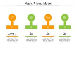 Matrix Pricing Model Ppt Powerpoint Presentation Show Graphics Cpb