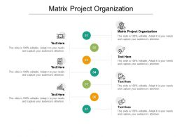 Matrix Project Organization Ppt Powerpoint Presentation Outline Pictures Cpb