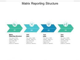 Matrix Reporting Structure Ppt Powerpoint Presentation Ideas Outfit Cpb