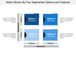 Matrix Shown By Four Segmented Options And Features