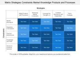 Matrix Strategies Constraints Market Knowledge Products And Processes