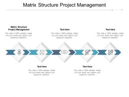Matrix Structure Project Management Ppt Powerpoint Presentation Outline Design Ideas Cpb