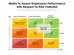 Matrix To Assess Employees Performance With Respect To Their Potential