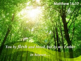 Matthew 16 17 You by flesh and blood PowerPoint Church Sermon