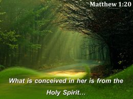 Matthew 1 20 What is conceived in her PowerPoint Church Sermon