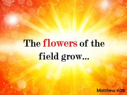 Matthew 6 28 The flowers of the field PowerPoint Church Sermon
