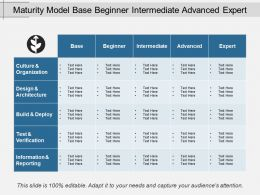 Maturity Model Base Beginner Intermediate Advanced Expert