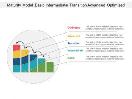 Maturity Model Basic Intermediate Transition Advanced Optimized