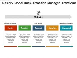 Maturity Model Basic Transition Managed Transform