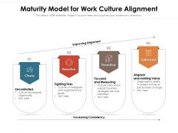 Maturity Model For Work Culture Alignment