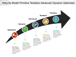 Maturity Model Primitive Tentative Advanced Dynamic Optimized