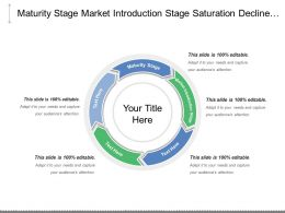Maturity Stage Market Introduction Stage Saturation Decline Stage