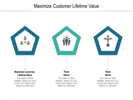 Maximize Customer Lifetime Value Ppt Powerpoint Presentation File Vector Cpb