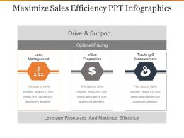 Maximize Sales Efficiency Ppt Infographics