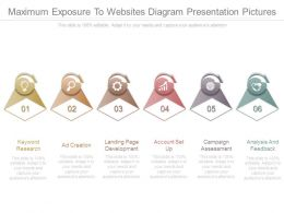 Maximum Exposure To Websites Diagram Presentation Pictures
