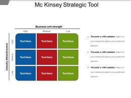 Mc Kinsey Strategic Tool Example Ppt Presentation