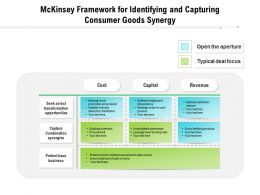 Mckinsey Framework For Identifying And Capturing Consumer Goods Synergy
