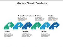 Measure Overall Excellence Ppt Powerpoint Presentation Pictures Guidelines Cpb