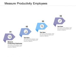 Measure Productivity Employees Ppt Powerpoint Presentation Portfolio Information Cpb