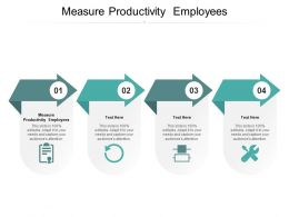 Measure Productivity Employees Ppt Powerpoint Presentation Show Styles Cpb