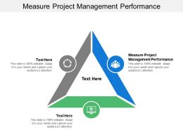 Measure Project Management Performance Ppt Powerpoint Presentation Slides Layout Ideas Cpb