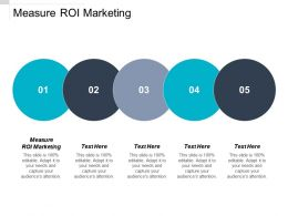 Measure ROI Marketing Ppt Powerpoint Presentation Portfolio Structure Cpb