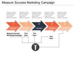 Measure Success Marketing Campaign Ppt Powerpoint Presentation Infographics Examples Cpb