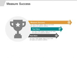 Measure Success Ppt Powerpoint Presentation Infographics Template Cpb