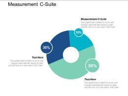 Measurement C Suite Ppt Powerpoint Presentation Styles Structure Cpb