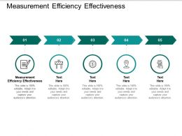 Measurement Efficiency Effectiveness Ppt Powerpoint Presentation Styles Samples Cpb