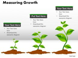 Measuring Growth Powerpoint Presentation Slides