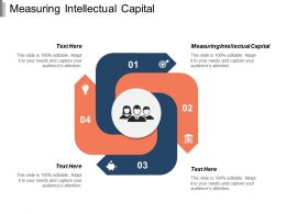 Measuring Intellectual Capital Ppt Powerpoint Presentation Icon Visual Aids Cpb