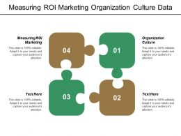 Measuring Roi Marketing Organization Culture Data Science Analytics Cpb