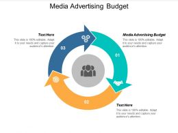 Media Advertising Budget Ppt Powerpoint Presentation Professional Example Cpb