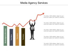Media Agency Services Ppt Powerpoint Presentation Ideas Visuals Cpb