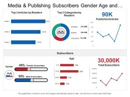 Media And Publishing Subscribers Gender Age And Categories Dashboard