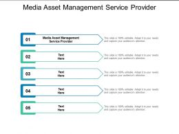 Media Asset Management Service Provider Ppt Powerpoint Outline Gridlines Cpb