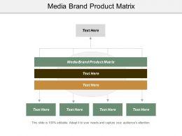 Media Brand Product Matrix Ppt Powerpoint Presentation Infographics Slide Portrait Cpb