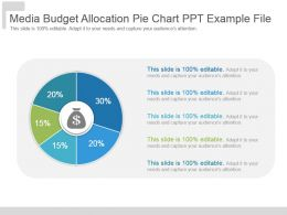 Media Budget Allocation Pie Chart Ppt Example File
