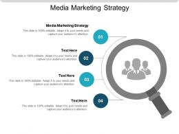 Media Marketing Strategy Ppt Powerpoint Presentation Styles Guide Cpb