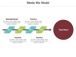 Media Mix Model Ppt Powerpoint Presentation Icon Styles Cpb