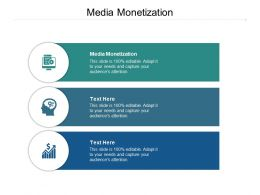Media Monetization Ppt Powerpoint Presentation Model Themes Cpb