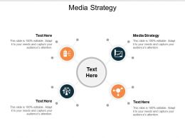 Media Strategy Ppt Powerpoint Presentation Ideas Diagrams Cpb