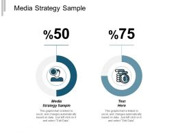 Media Strategy Sample Ppt Powerpoint Presentation Infographics Tips Cpb