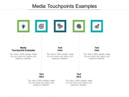 Media Touchpoints Examples Ppt Powerpoint Presentation Styles Aids Cpb