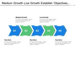 Medium Growth Low Growth Establish Objectives Set Strategy