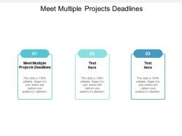 Meet Multiple Projects Deadlines Ppt Powerpoint Presentation File Graphics Example Cpb