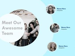Meet Our Awesome Team Designation N267 Ppt Powerpoint Presentation Example