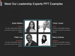 Meet Our Leadership Experts Ppt Examples