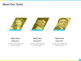Meet Our Team Designation H113 Ppt Powerpoint Presentation File Picture